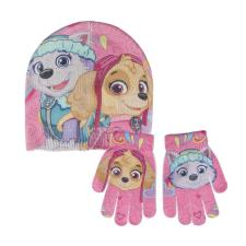 Paw Patrol Skye & Everest Hat & Gloves Set