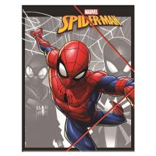 Marvel Spiderman Plastic A4 Elasto Folder