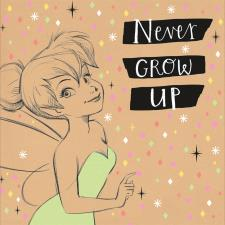 Never Grow Up Tinkerbell Disney Faries Birthday Card