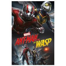Ant-Man And The Wasp Dynamic Duo Maxi Poster