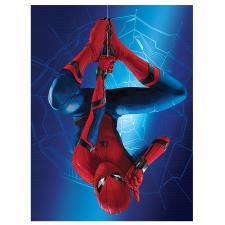 Spider-Man Homecoming Hanging Canvas Print (60cm x 80cm)