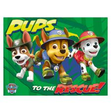 Paw Patrol Jungle Pups Canvas Print (60cm x 80cm)