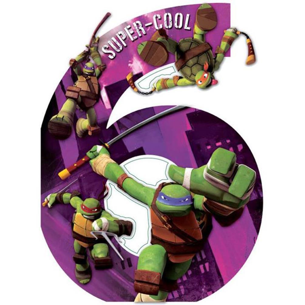 6th Birthday Teenage Mutant Ninja Turtles Large Birthday Card