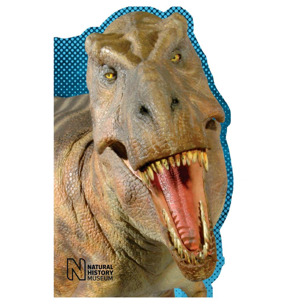 T Rex Shaped Natural History Museum Birthday Card 099