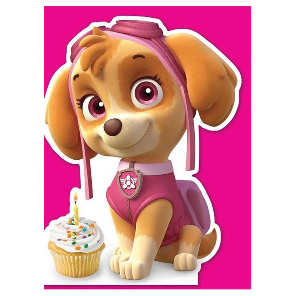 Paw Patrol Skye Shaped Birthday Card Pa032 Character